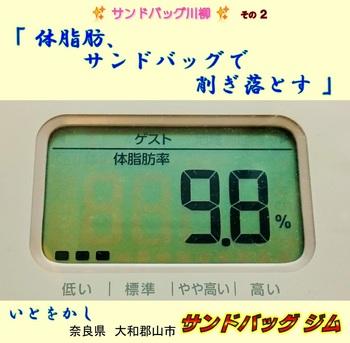 サンドバッグ川柳②体脂肪SDで削ぎ落とす.jpg